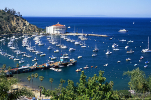 Beautiful Avalon Harbor in Catalina